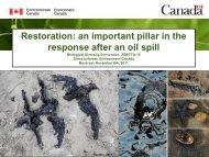 Restoration: an important pillar in the response after an oil spill