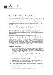 Presskit för frivilligorganisationer (pdf, 106 kb) - Ungdomsstyrelsen