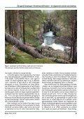 Den gamle furuskogen i Dieváidvuovdi/Dividalen – eit ... - NTNU - Page 3