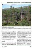Den gamle furuskogen i Dieváidvuovdi/Dividalen – eit ... - NTNU - Page 5