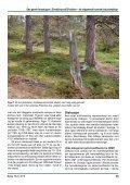 Den gamle furuskogen i Dieváidvuovdi/Dividalen – eit ... - NTNU - Page 7