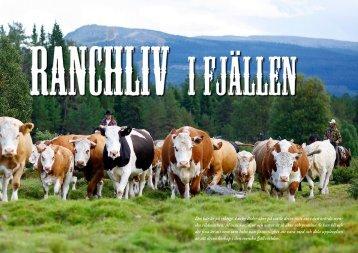 Ranchliv i Fjällen - Trumvallen