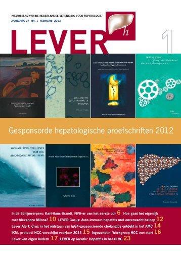 Gesponsorde hepatologische proefschriften 2012 - Nederlandse ...