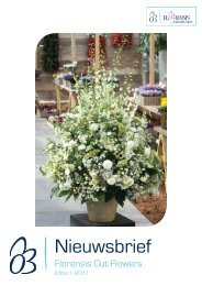 Sorteren Lisianthus - Florensis