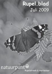 Rupel.blad - Natuur in Aartselaar