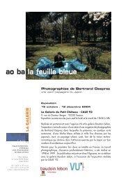 ao ba la feuille bleue - Agence VU