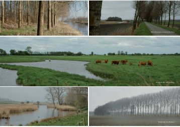 Zeeuws-Vlaanderen - Provincie Zeeland