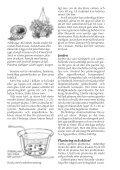 Odla i kruka - Page 2