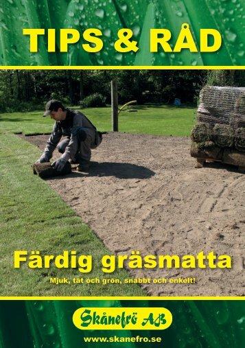Färdig gräsmatta