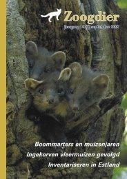Hebben muizenjaren invloed op de voortplanting bij boommarters?