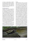 Hebben muizenjaren invloed op de voortplanting bij boommarters? - Page 5