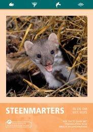 Brochure steenmarters in en om het huis - De Zoogdiervereniging