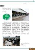 Landmandsportræt - Djursland Landboforening - Page 5