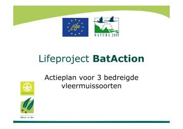 Action Plan for 3 Threatened Bat Species - De Zoogdiervereniging