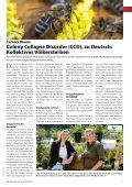 Ausgabe 05/2013 - Weissensee - Page 7