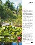 TRÄDGÅRD & BLOMMOR Näckrosor och dammar - Lassas Hagar - Page 3