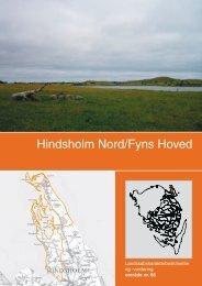 Landskabsanalyse Hindsholm N med Fynshoved - Kerteminde ...
