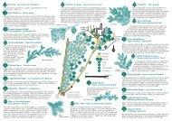 Darley Abbey Park Tree Trail - Derby and South Derbyshire Ramblers