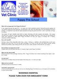 Puppy Pre-School - Murray Bridge Veterinary Clinic