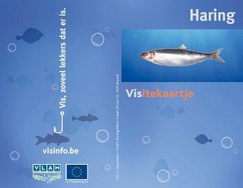 Fiches visitekaartjes - NL.pdf