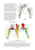 12. Nakkens anatomi - LFN - Page 7