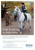 fyra dagars hästfest i huvudstaden! - Stockholm Equestrian Games - Page 2