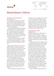 Moçambiques historia - Röda Korset