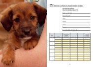 Folder voeding- en groeischema downloaden - PuppyDoos