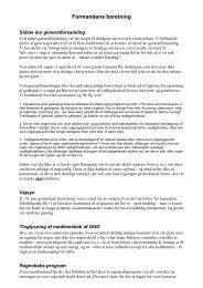 Formandens beretning 2009