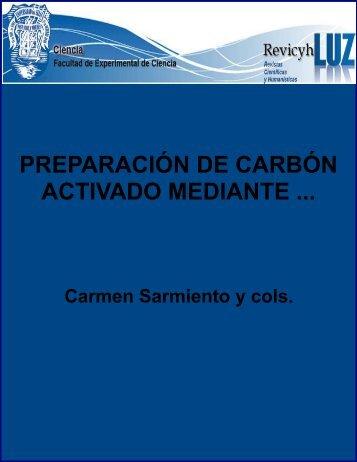 Preparación de carbón activado mediante la activación química de ...