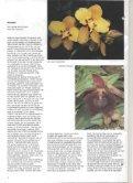 1994 - 4 - Orchideeën Vereniging Vlaanderen - Page 4