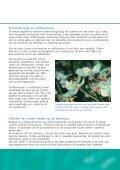 Bijen en bestuiving in de fruitteelt bij open teelten - Wageningen UR ... - Page 3