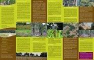 folder Groene Gordel Brugge.pdf