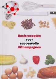 Basisrecepten voor succesvolle UiTcampagnes - CultuurNet ...