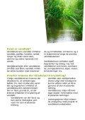 Information om krydsning af vandløb med rørledninger, kabler mv. - Page 3