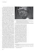 Het kasteel van Gaasbeek (gem. Lennik, prov. Vlaams ... - OAR - Page 6