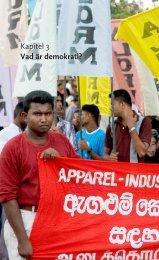 Kapitel 3 Vad är demokrati? - Palmecenter