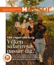M-Magasin Safari - Trackers