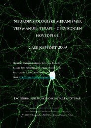 Neurofysiologiske mekanismer ved manuel terapi - Fagforum for ...