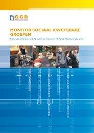 Factsheet monitor sociaal kwetsbaren Bloemendaal - Net