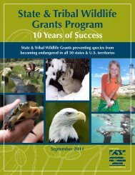 State & Tribal Wildlife Grants Program