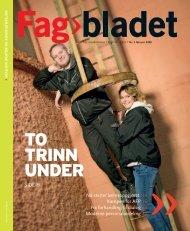 Fagbladet 2008 02 KON