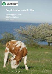 Betydelsen av betande djur - Stiftelsen Lantbruksforskning