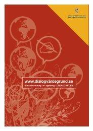 Slutrapport om www.dialogvärdegrund.se - Ungdomsstyrelsen