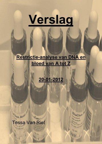Verslag: Restrictie-analyse van DNA en bloed van A tot Z