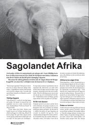 Sagolandet Afrika