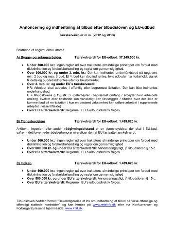 Annoncering og indhentning af tilbud efter tilbudsloven ... - Viborg Stift