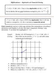 Mer om algebraiska och numeriska lösningar