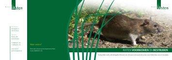 folder rattenbestrijding - Gemeente Asten