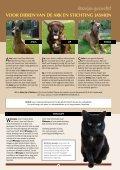 Wij staan klaar voor alle dieren! - Stichting Menodi - Page 7